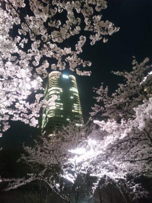 仙石山森タワー(六本木アークヒルズ)