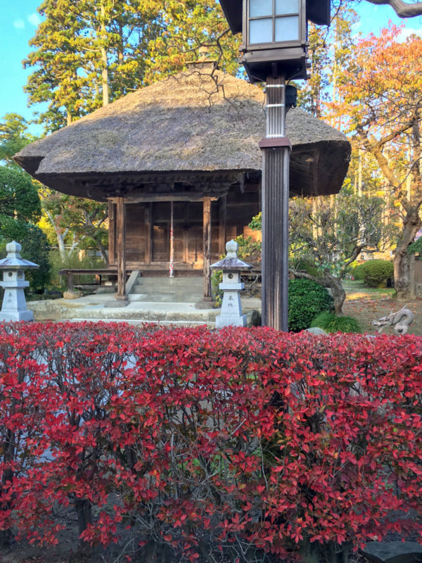 瑞巌寺(松島青龍山瑞巌円福禅寺)