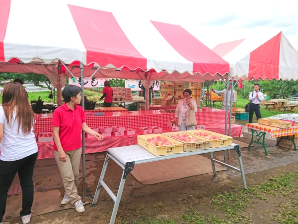 雨宮農園:桃食べ放題
