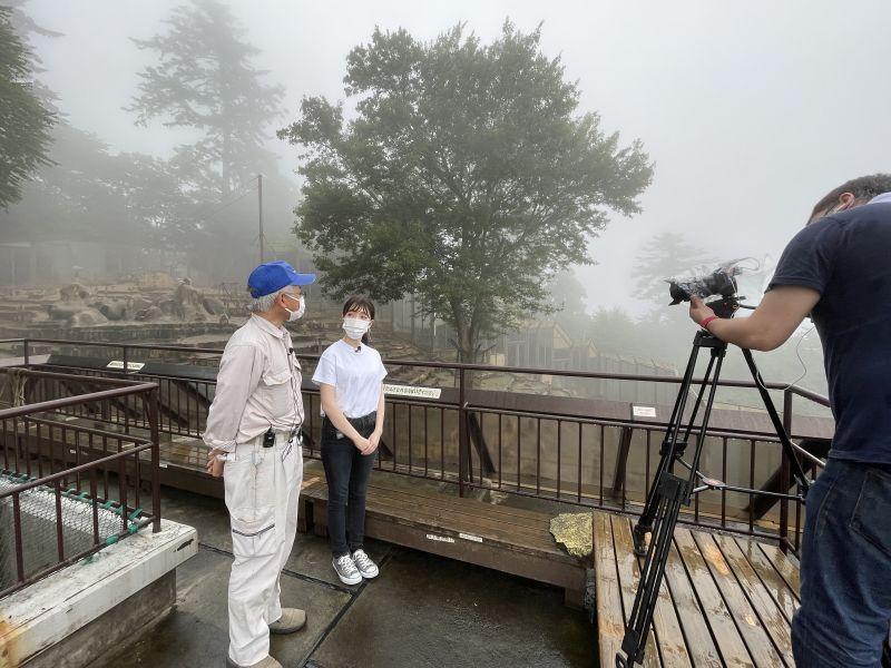 7/20(火)秋葉原動物カフェ&高尾山さる園オンラインツアー(さくらツーリスト)