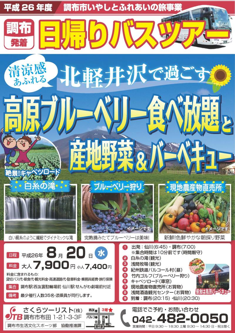 北軽井沢で過ごす 高原のブルーベリー食べ放題と産地野菜&バーベキュー