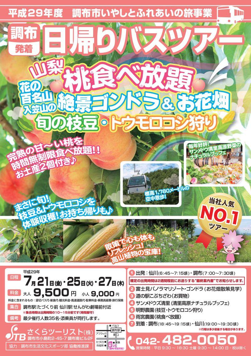 7/21・25・27長野 高原リゾート&高原野菜&桃食べ放題!