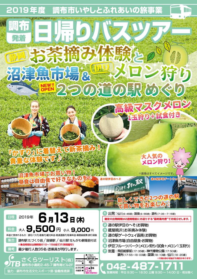 【静岡】静岡お茶摘み体験 と 伊豆のメロン狩り、沼津魚市場 と 新しくできた2つの道の駅めぐり(チラシ・表)