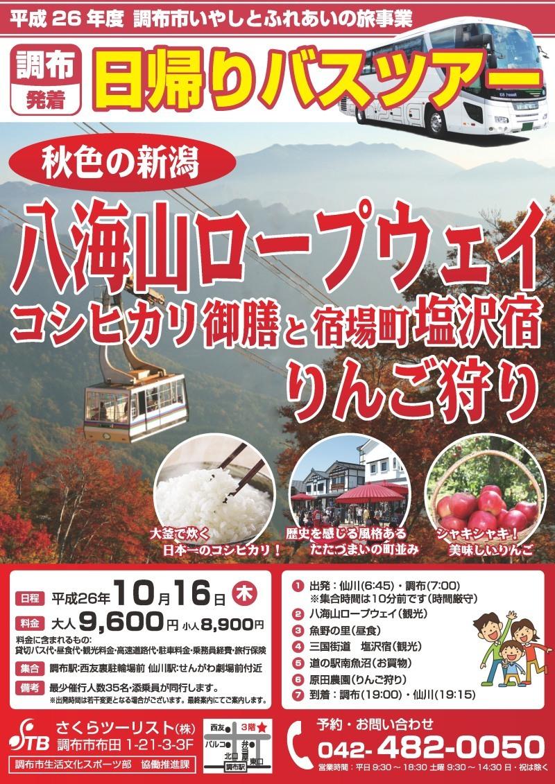 秋色の新潟八海山ロープウェイとコシヒカリ御膳 宿場町・塩沢宿 りんご狩り