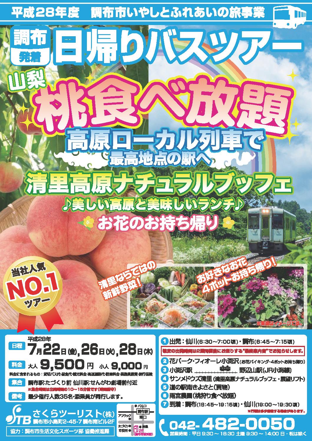 山梨桃食べ放題・高原ローカル列車で最高地点の駅へ・清里高原ナチュラルブッフェ