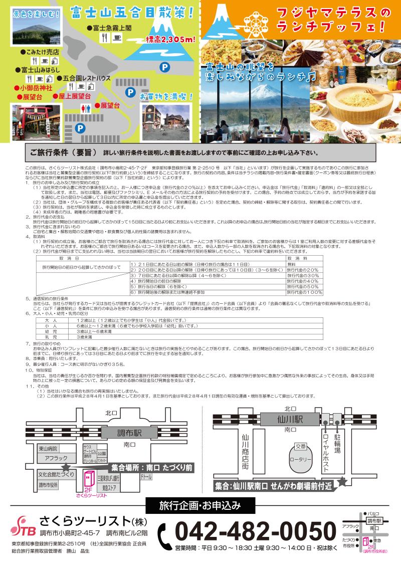 富士芝桜と初物さくらんぼ狩り食べ放題+フジヤマテラスのランチブッフェ